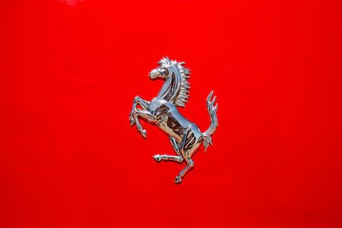 Darmowe zdjęcie z galerii z czerwone tło, elegancja, koń