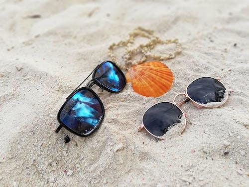 Ảnh lưu trữ miễn phí về bãi cát, sắc thái, sắc thái trên bãi biển, vỏ sò biển