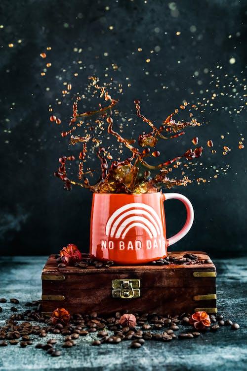 咖啡, 咖啡種子, 工作室拍攝 的 免費圖庫相片