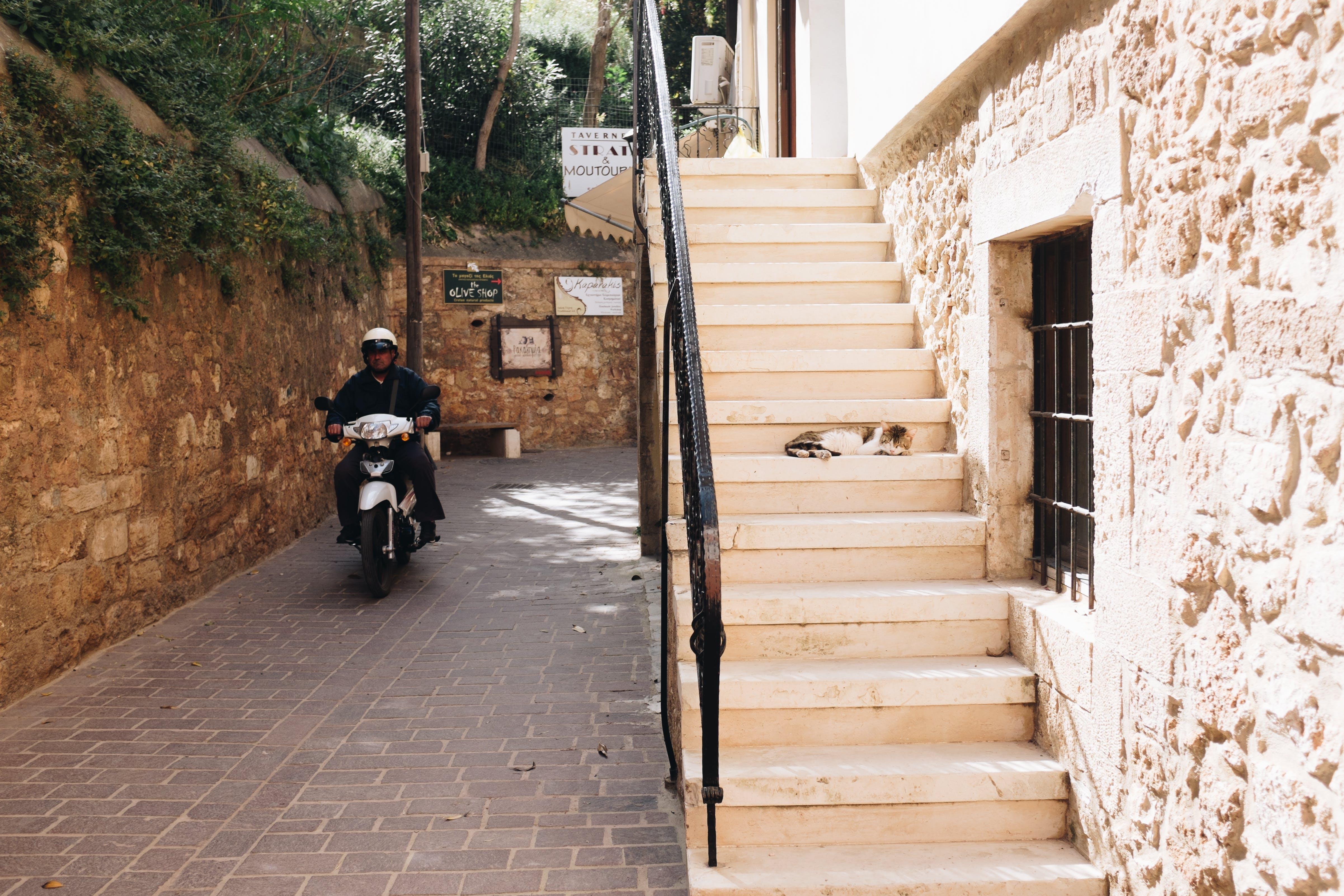 Kostenloses Stock Foto zu architektur, fenster, mann, motorrad
