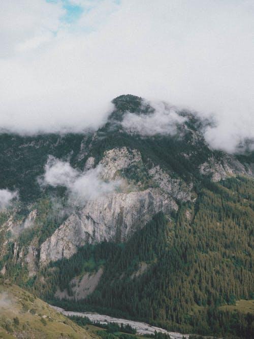 Foto profissional grátis de abaixo, ao ar livre, beleza na natureza