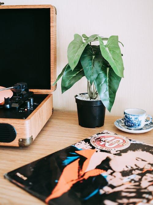 Immagine gratuita di alba, arte, caffè