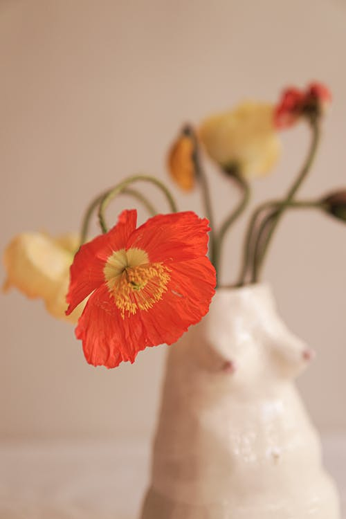 Red and Yellow Flower in White Ceramic Vase