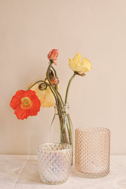White and Yellow Flower in Clear Glass Vase