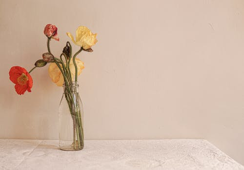 Yellow and Red Roses in Clear Glass Vase