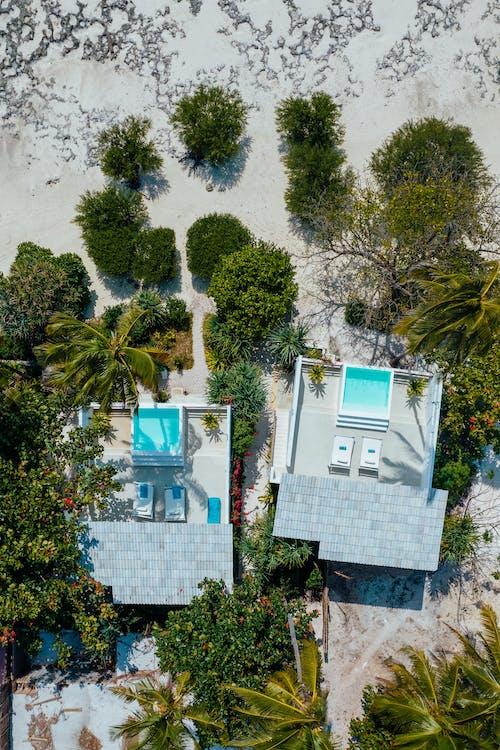 Foto d'estoc gratuïta de casa de platja, directament a dalt, estació turística