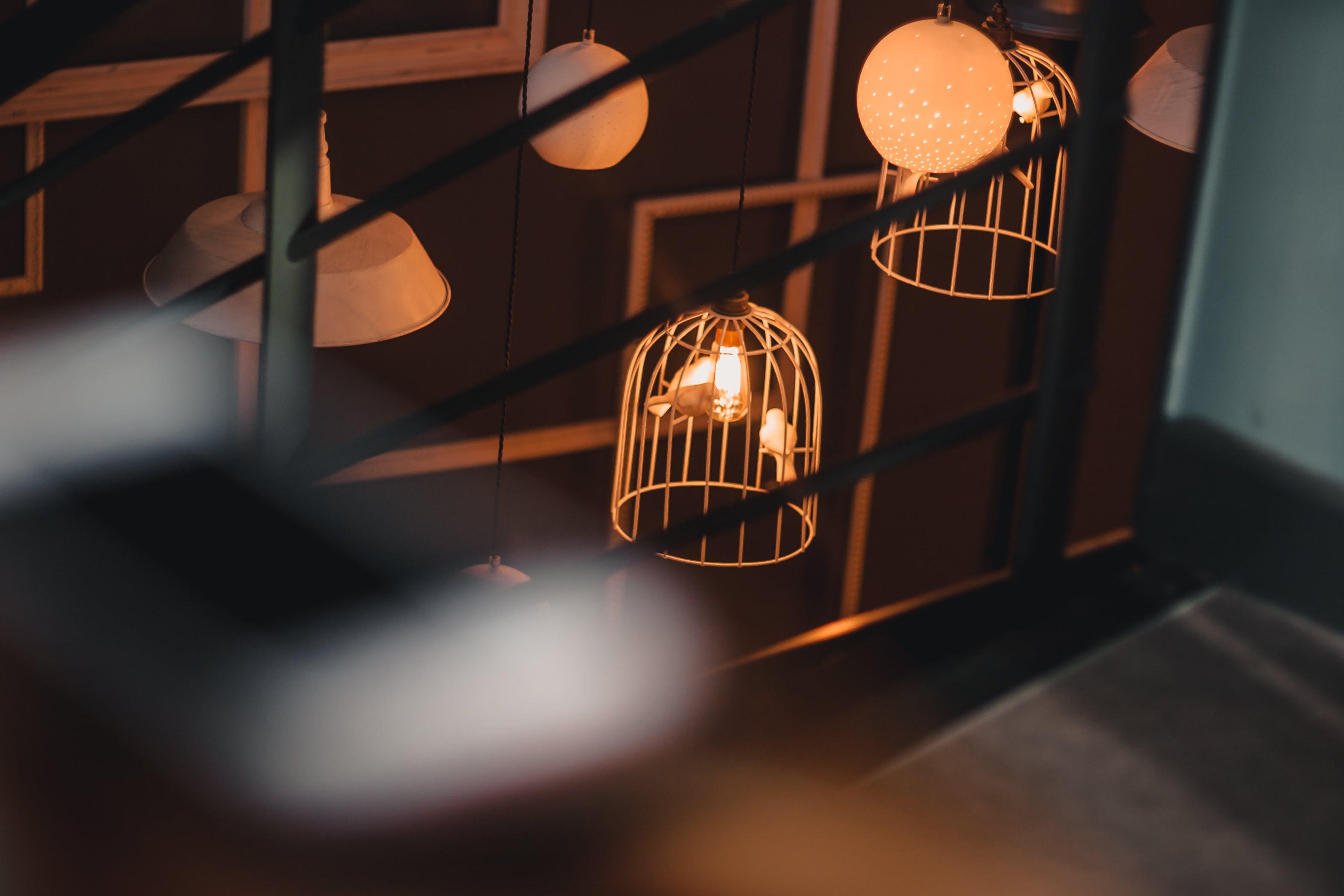 Two Birds Inside Birdcage