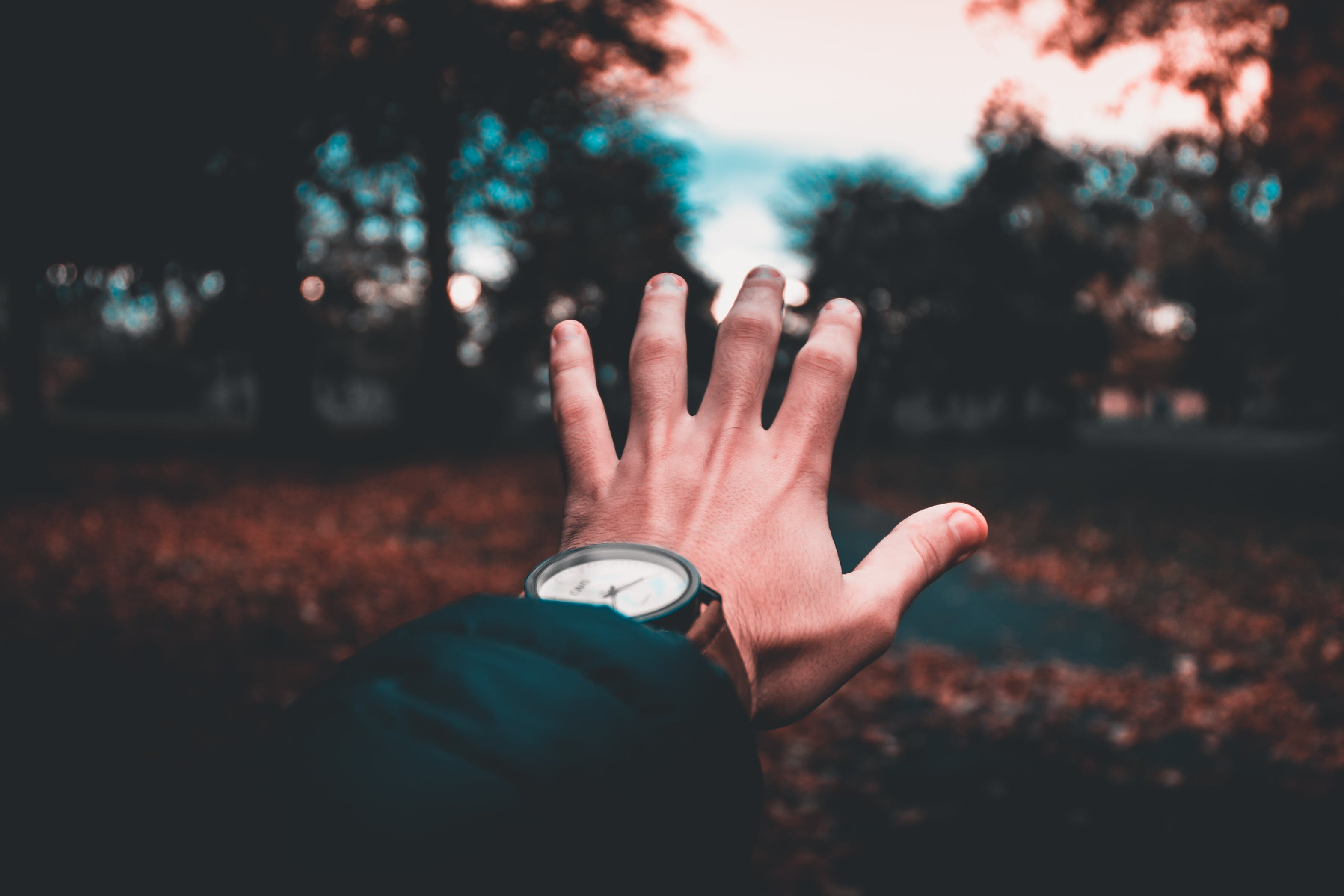 Person Wearing Round Analog Watch
