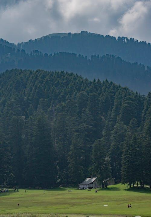 Free stock photo of beatiful landscape, green mountains