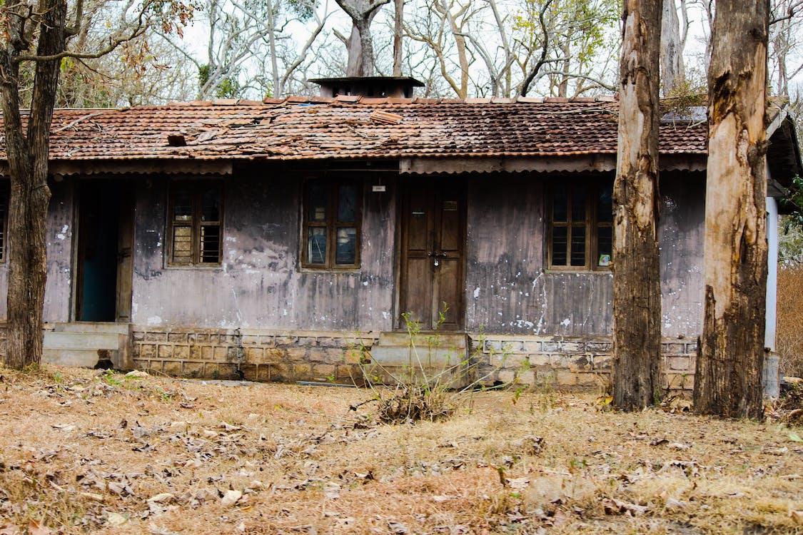 lesní dům