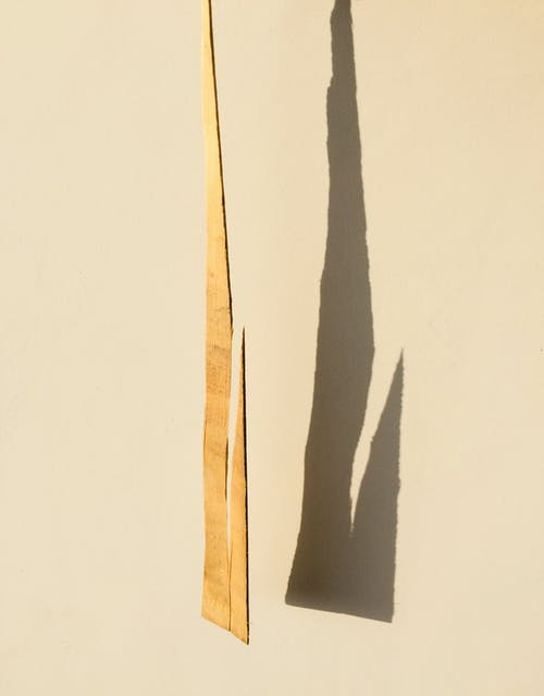 Brown Wooden Stick on White Surface