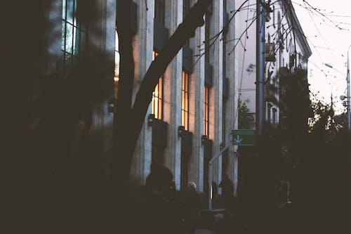 Безкоштовне стокове фото на тему «Windows, архітектура, Будівля, легкий»