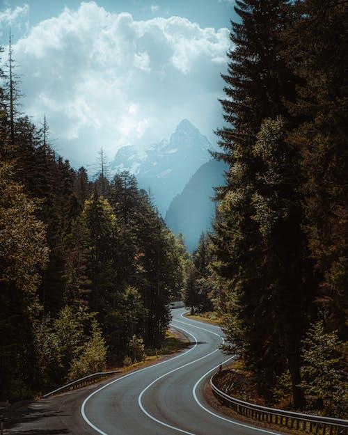 Free stock photo of mountain road, the giant mountains