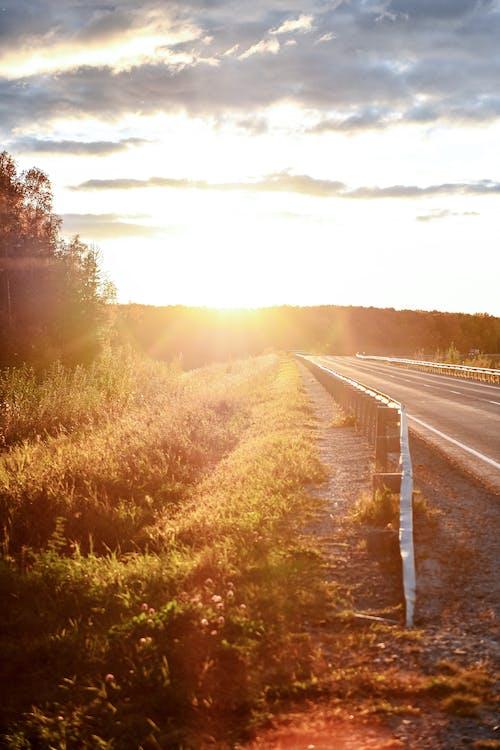 Free stock photo of autumn, sun, sunset