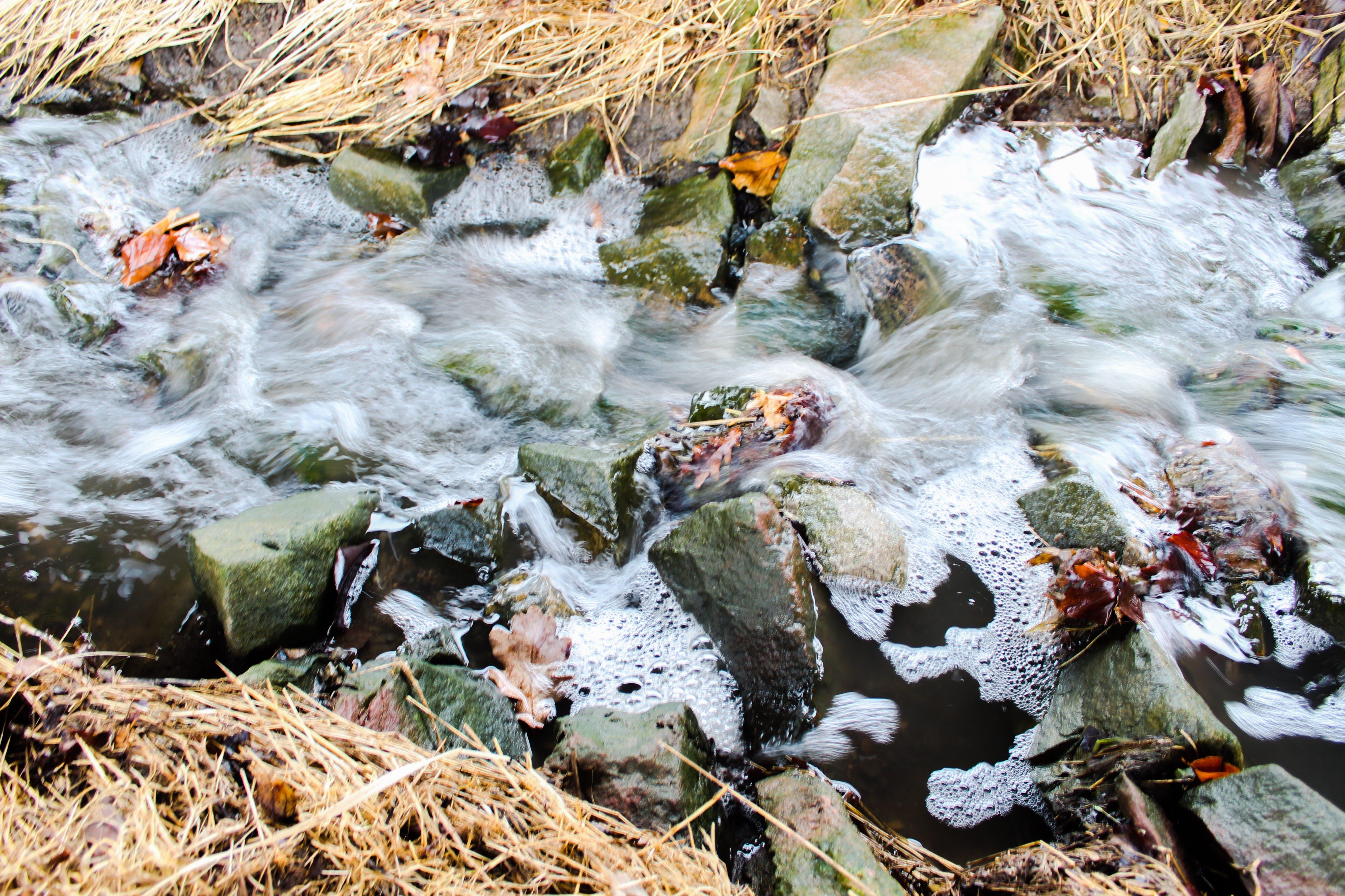 Free stock photo of fresh water