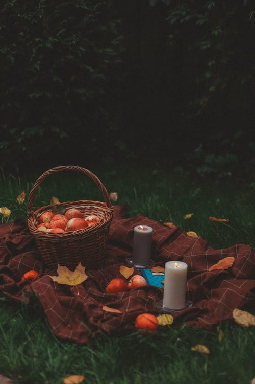 Picnic on a Meadow in Autumn
