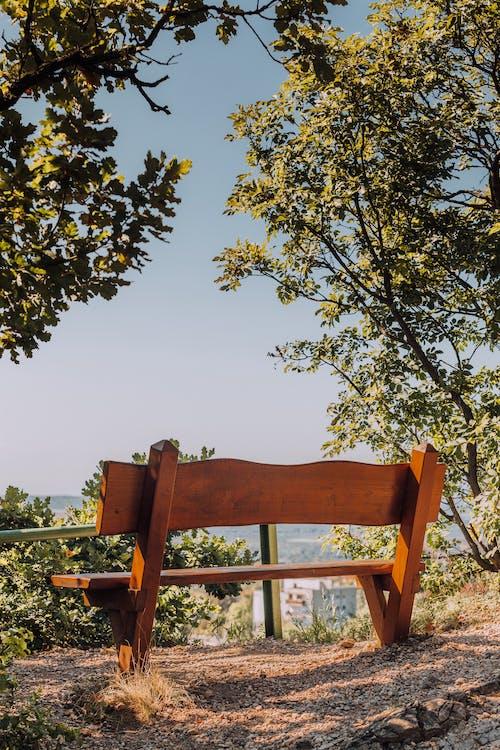 Безкоштовне стокове фото на тему «вказівки, дерев'яний, Деревина»