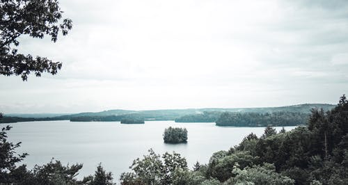 Kostnadsfri bild av dagsljus, muskoka, naturskön, träd
