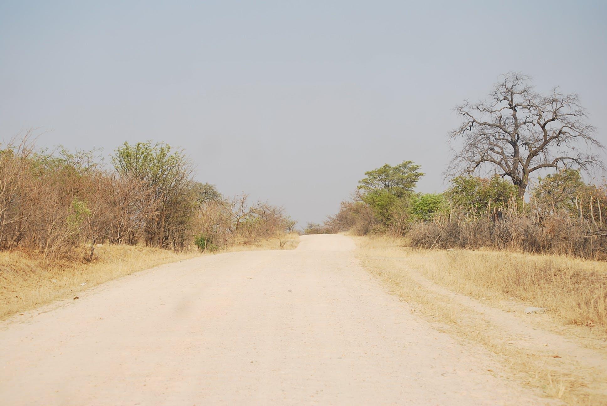 Gratis lagerfoto af vejen til verdens ende?