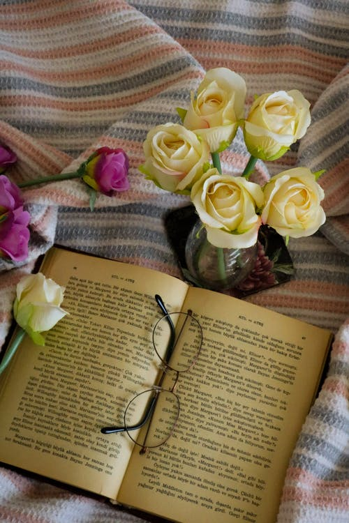 Ảnh lưu trữ miễn phí về cái bình hoa, cổ hủ, cuốn tiểu thuyết