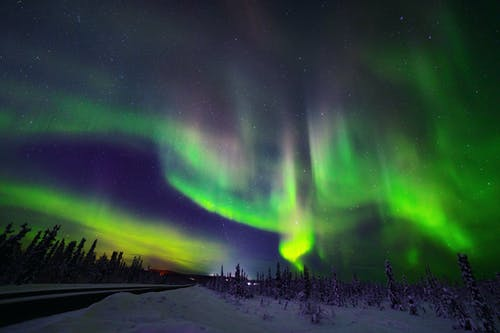 Panoramic View of Aurora Borealis over Road inSubpolar Conifer Forest in Wnter