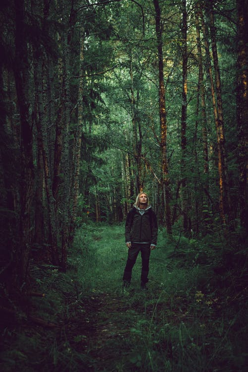 Young Man Standing Alone in Big Dark Forest