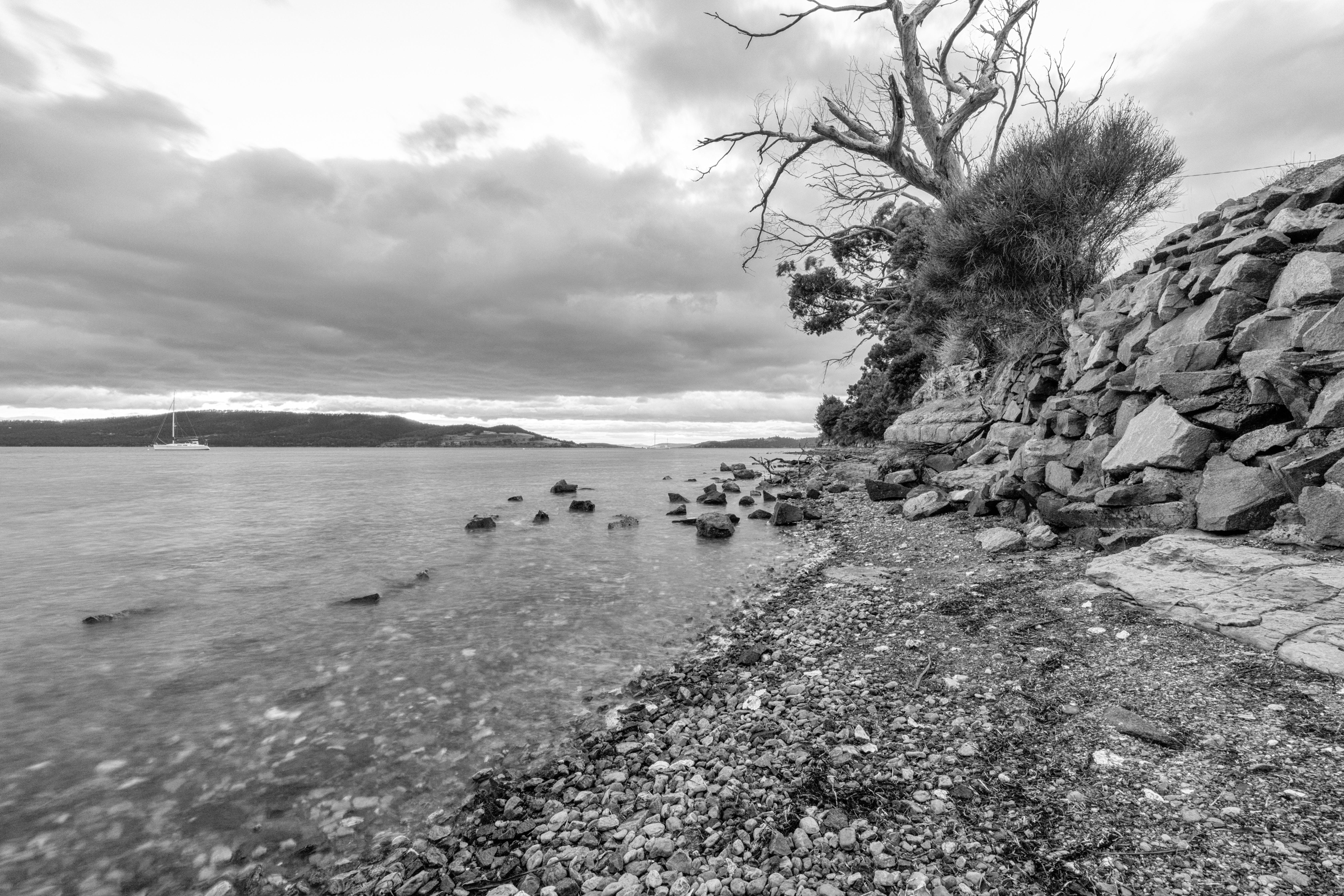 シースケープ, ビーチ, 夏, 岩の無料の写真素材