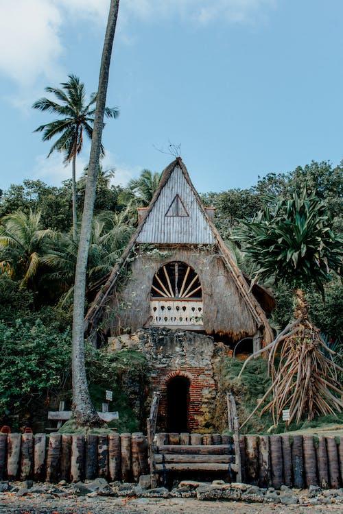 Immagine gratuita di alberi, architettura, capanna