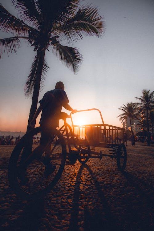 Foto d'estoc gratuïta de a l'aire lliure, bicicleta de càrrega, capvespre