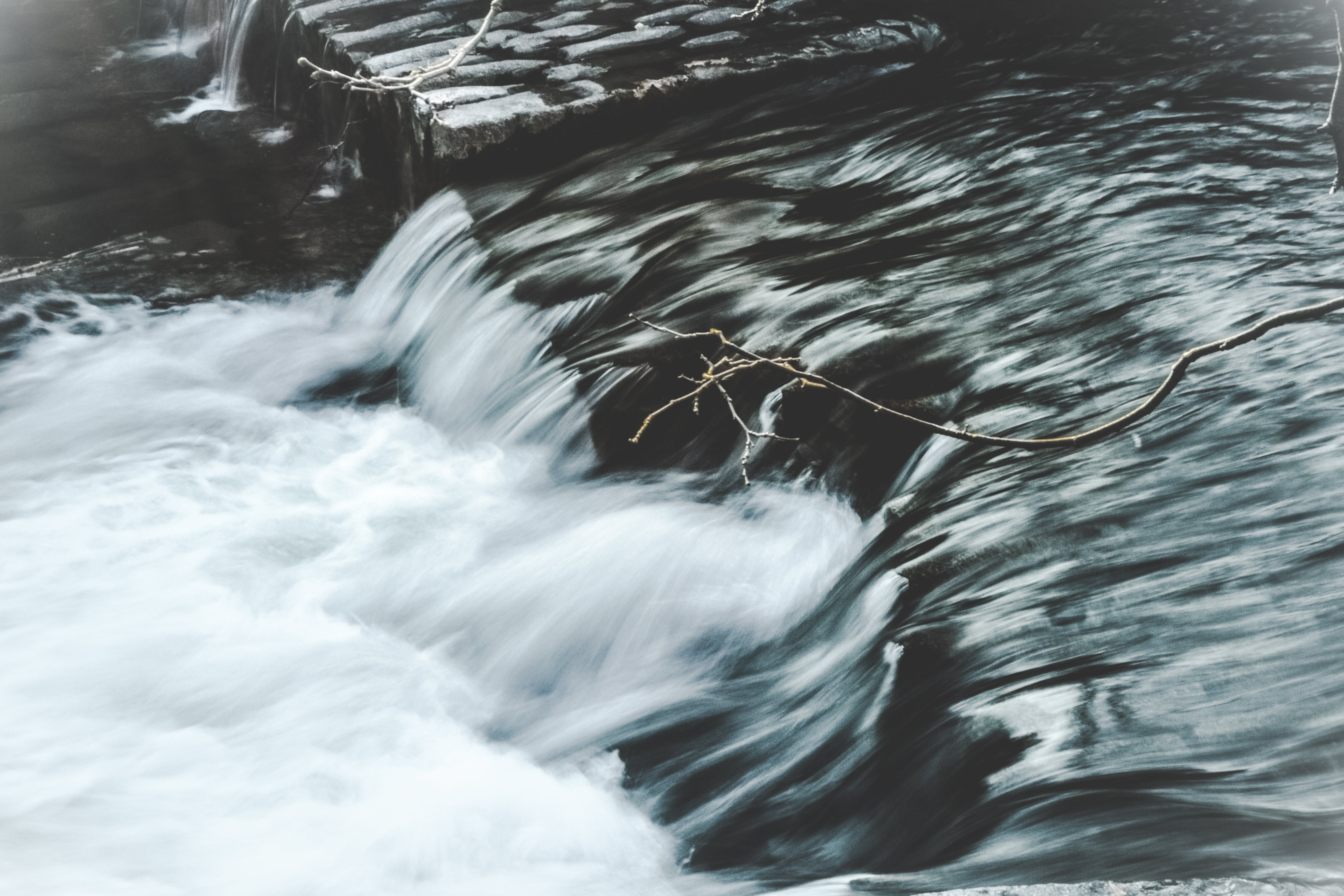 Free stock photo of nature, water, spring, river