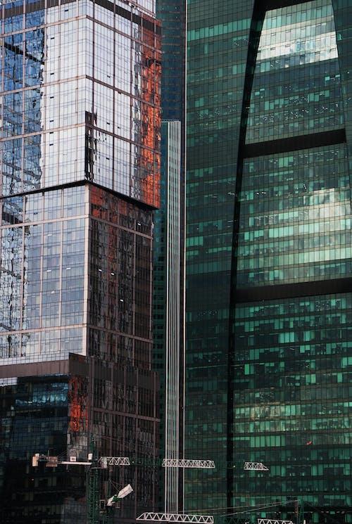 คลังภาพถ่ายฟรี ของ กลางแจ้ง, ตึกระฟ้า, นกกระเรียน