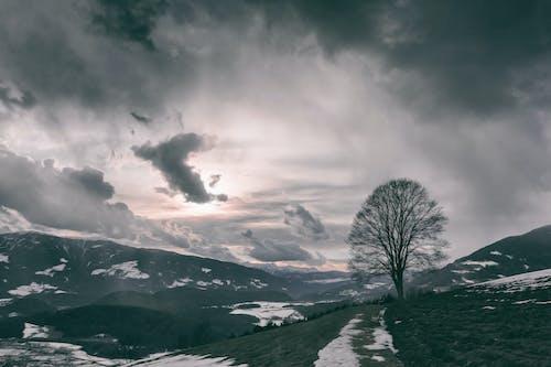 Fotobanka sbezplatnými fotkami na tému HD tapeta, hora, krajina, malebný