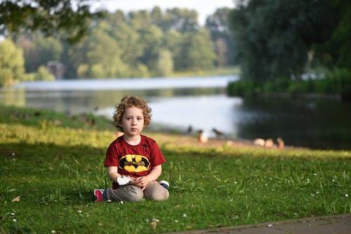 Free stock photo of amsterdam, bank, batman