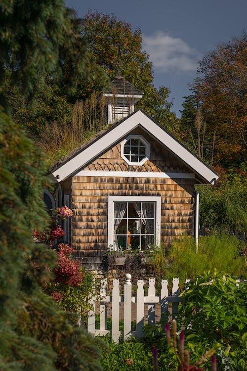 Kostenloses Stock Foto zu architektur, baum, bungalow