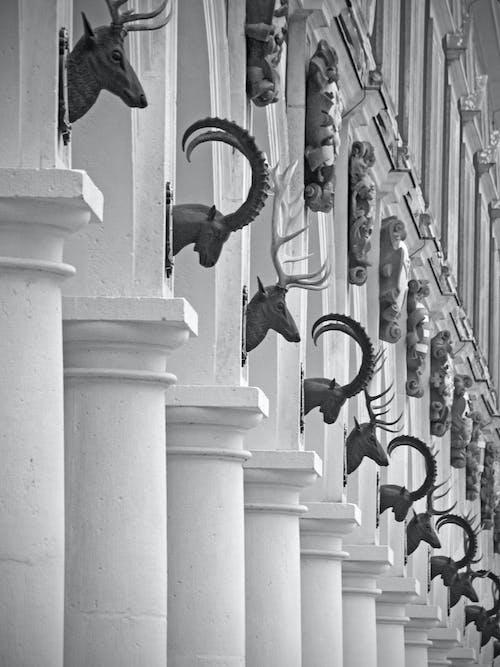 คลังภาพถ่ายฟรี ของ กลางวัน, การก่อสร้าง, ขาวดำ, คลาสสิก