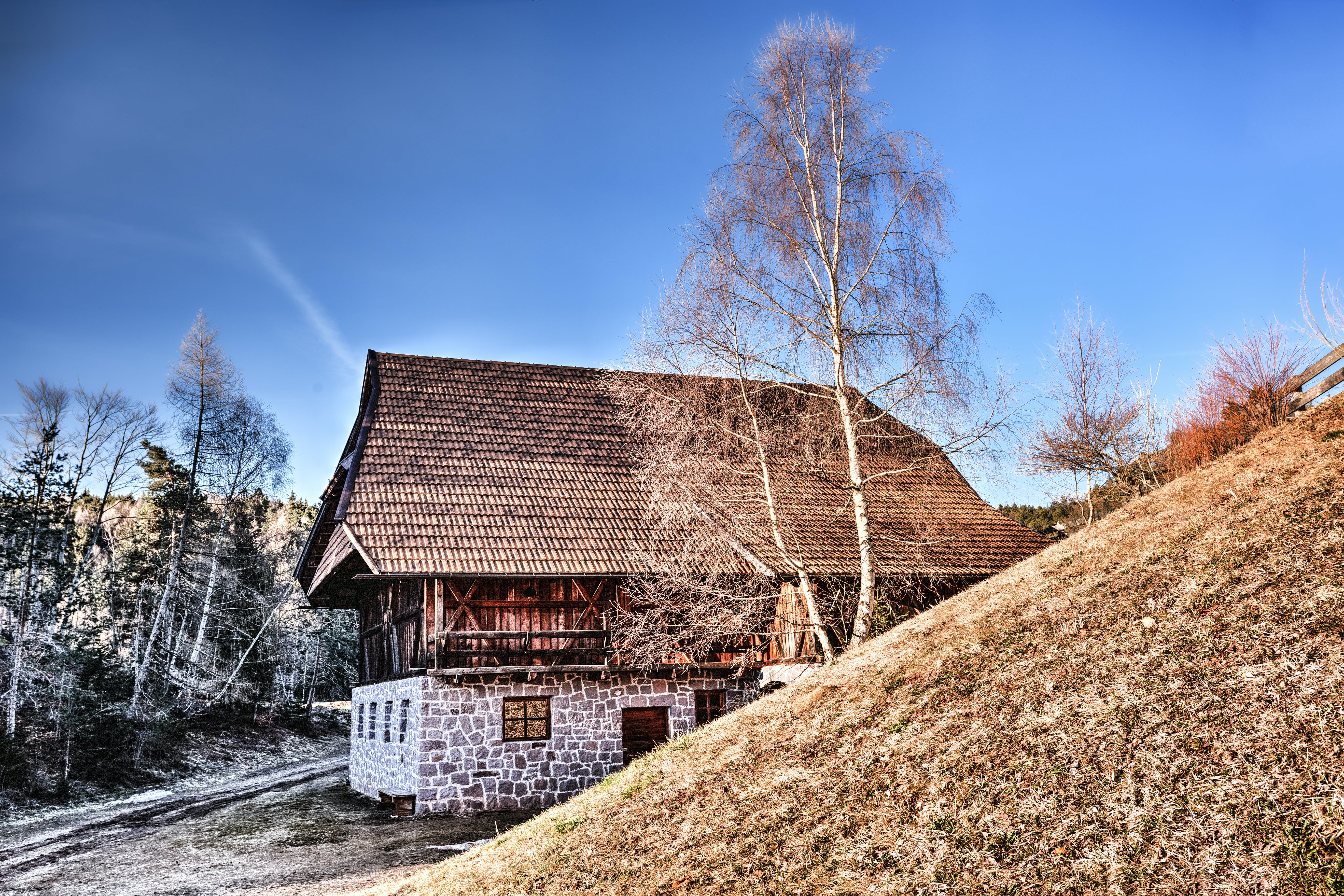 Brown Roof House Near Withered Trees Photography