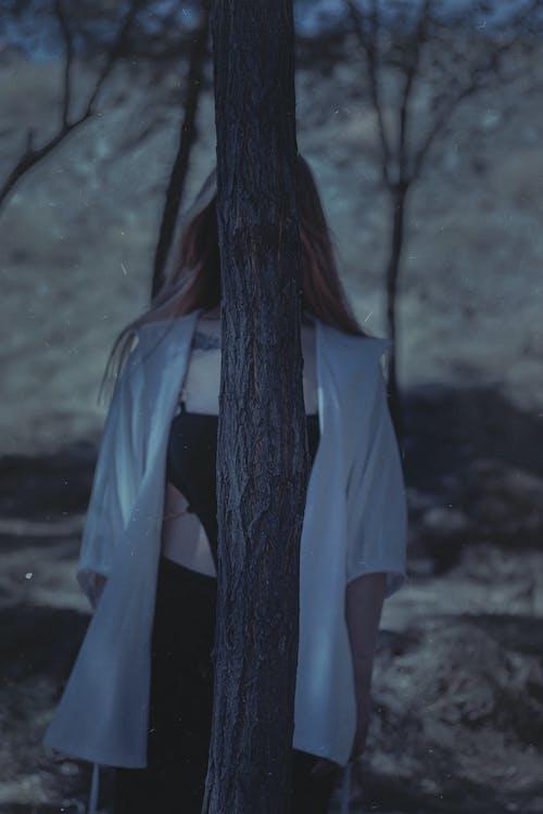 คลังภาพถ่ายฟรี ของ การถ่ายภาพบุคคล, ต้นไม้, ผู้หญิง
