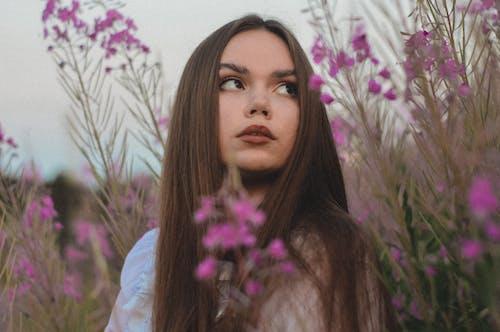 갈색, 긴, 꽃의 무료 스톡 사진