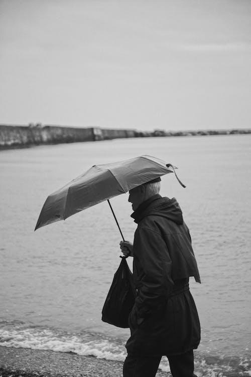 Fotos de stock gratuitas de a orillas del lago, adulto, al aire libre