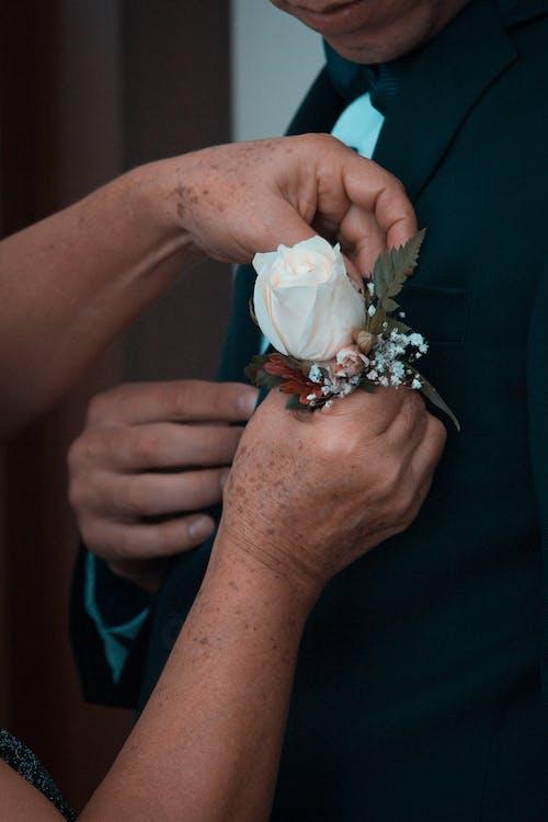 Free stock photo of adult, boda, bride