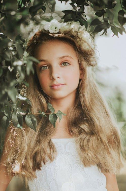 Foto stok gratis anak, cewek, daun