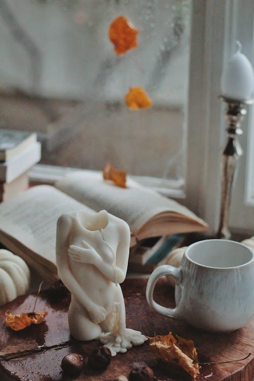 Foto stok gratis arca, Book, cangkir