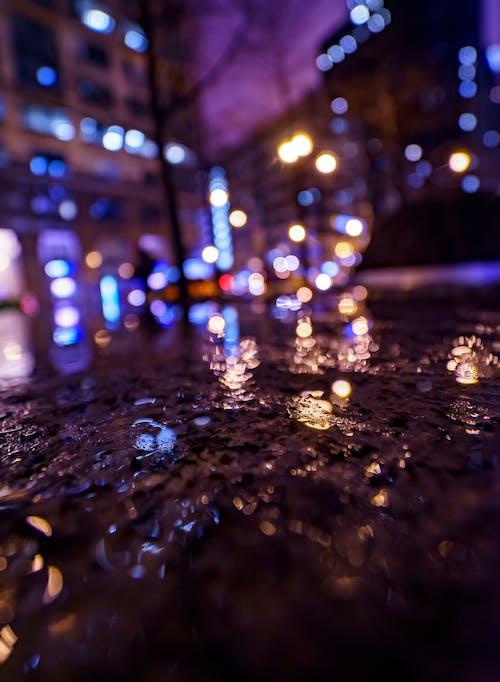 คลังภาพถ่ายฟรี ของ กลางคืน, การถ่ายภาพกลางคืน, ชิคาโก, ฝนตก