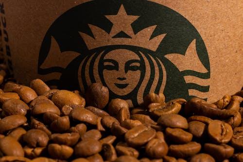 Δωρεάν στοκ φωτογραφιών με arabica, cafe, macro