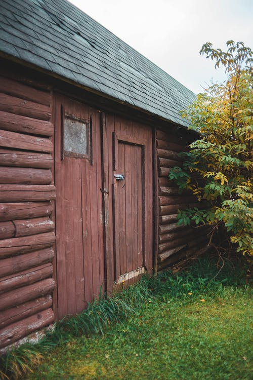 Immagine gratuita di albero, capannone, edificio