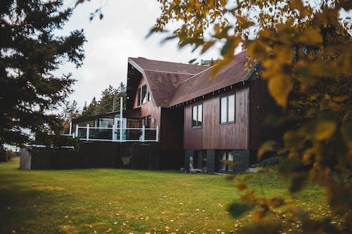 Immagine gratuita di albero, autunno, casa