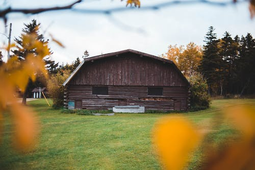 Big Wooden Building Seen through Autumn Leaves