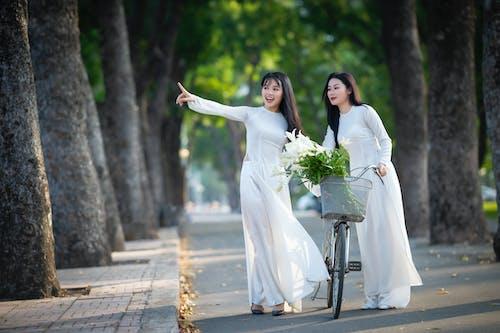 Gratis stockfoto met andere kant op kijken, bloem, boom