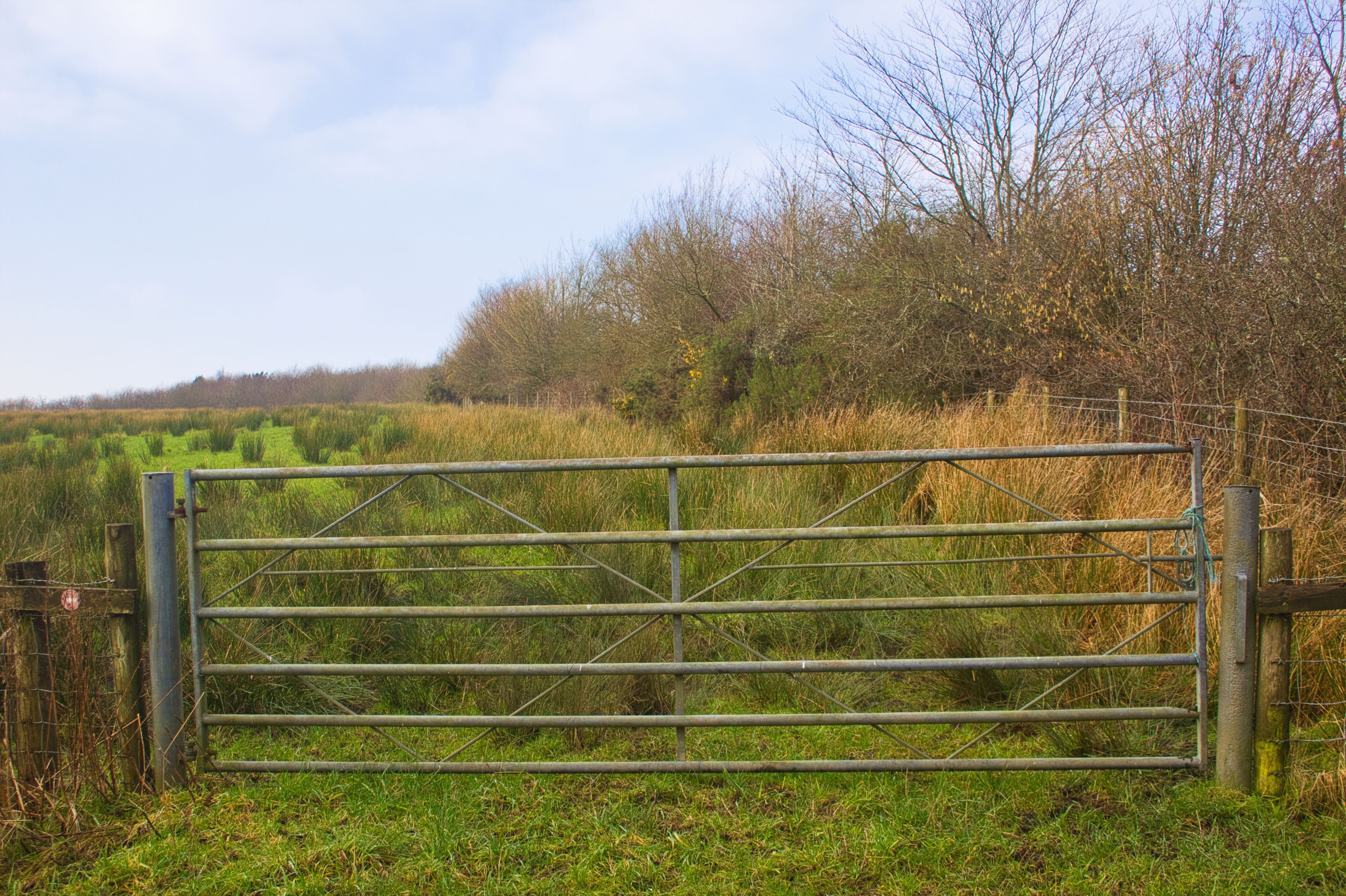 Free stock photo of country, countryside, farm, gate