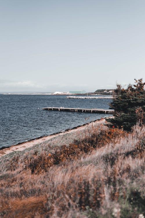 Landscape of Sea Coast